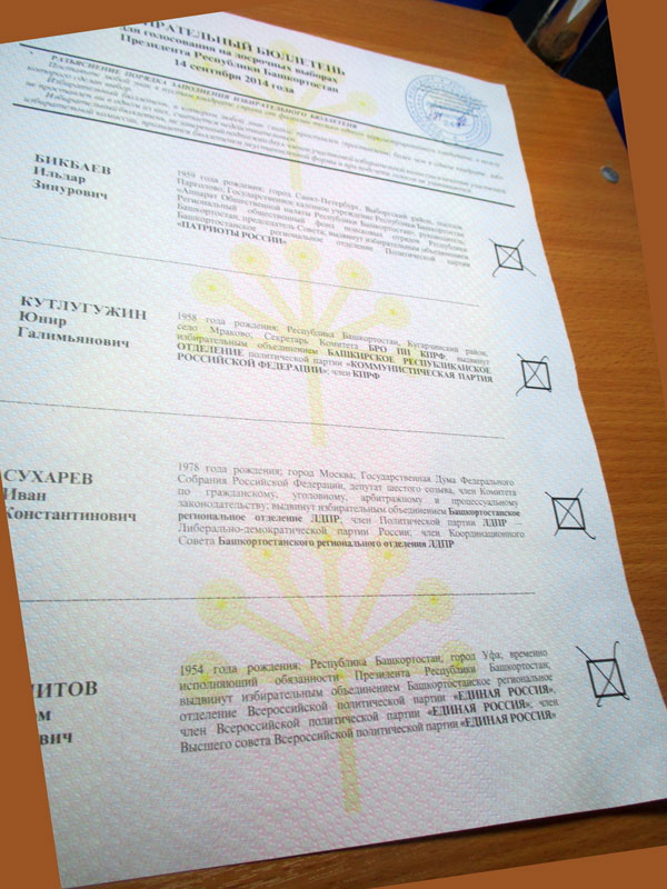 140914-vybory-800.jpg