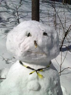 Снеговик 28.04.2010